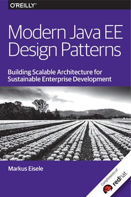 Java EE Design Patterns Graphic