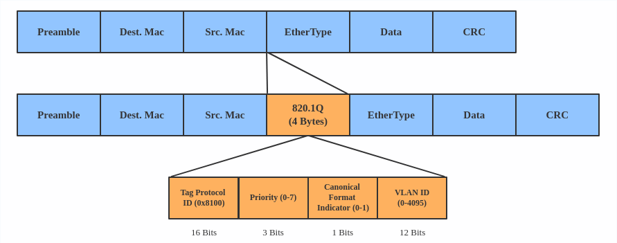 VLAN header