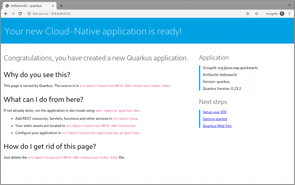The Quarkus dev landing page.