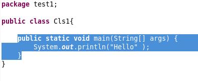 Screenshot of a selected code block.