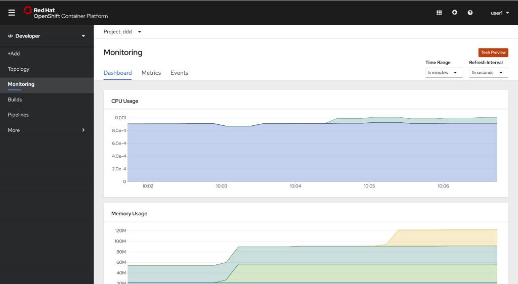 Developer -> Monitoring -> Dashboard tab
