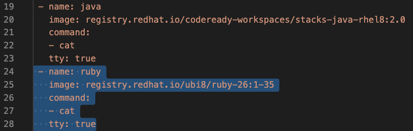 A screenshot of the configuration to add a Ruby container.