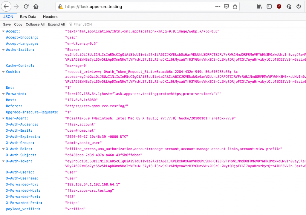 A screenshot of the JSON file.