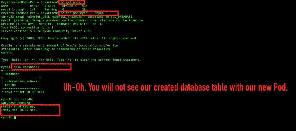 The created database table is empty.