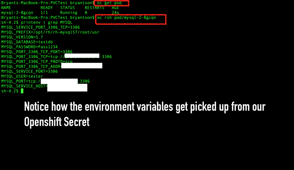 Check that the environment values from the OpenShift secret were successfully stored.