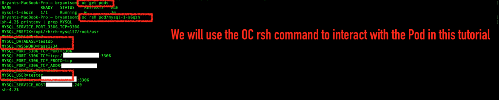 Run the 'oc rsh' command to interact with the pod, and verify the emvironment variables.