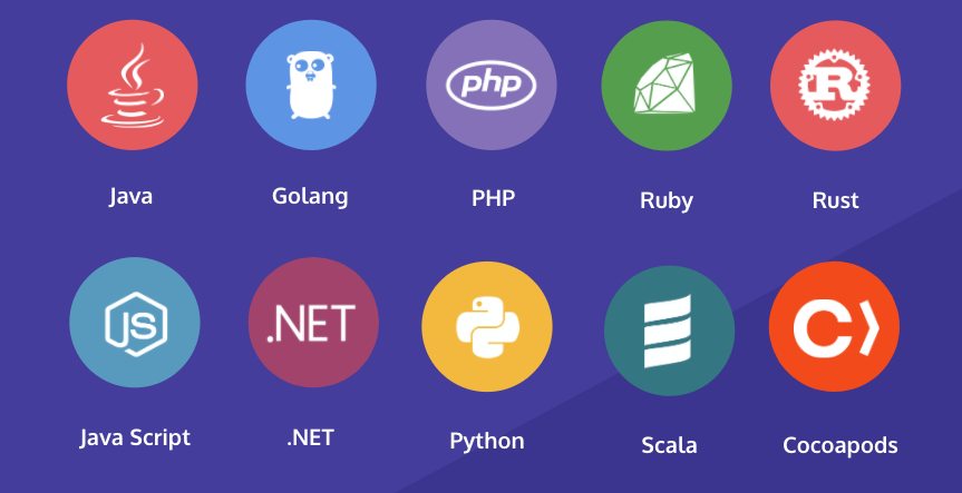 Programming languages in the Snyk ecosystem include Java, Python, Rust, and .NET.