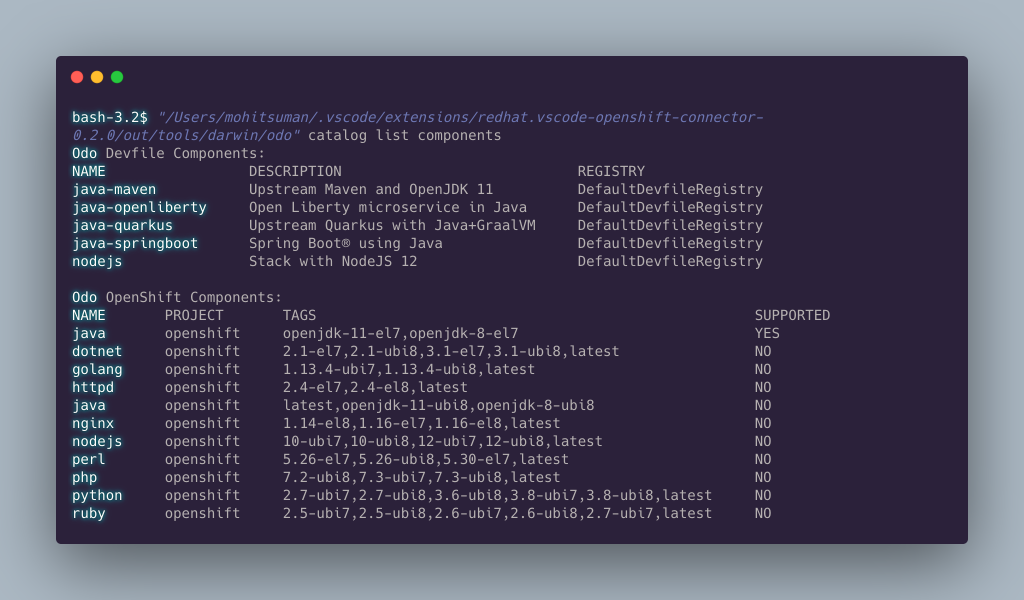 The terminal displays a list of current devfile components.