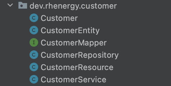 A screenshot of the Customer classes in a single domain package.
