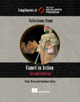 Camel in Action Book Cover